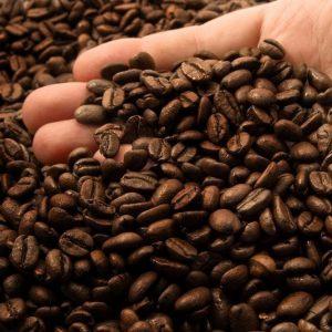 Rask Coffee Roasters